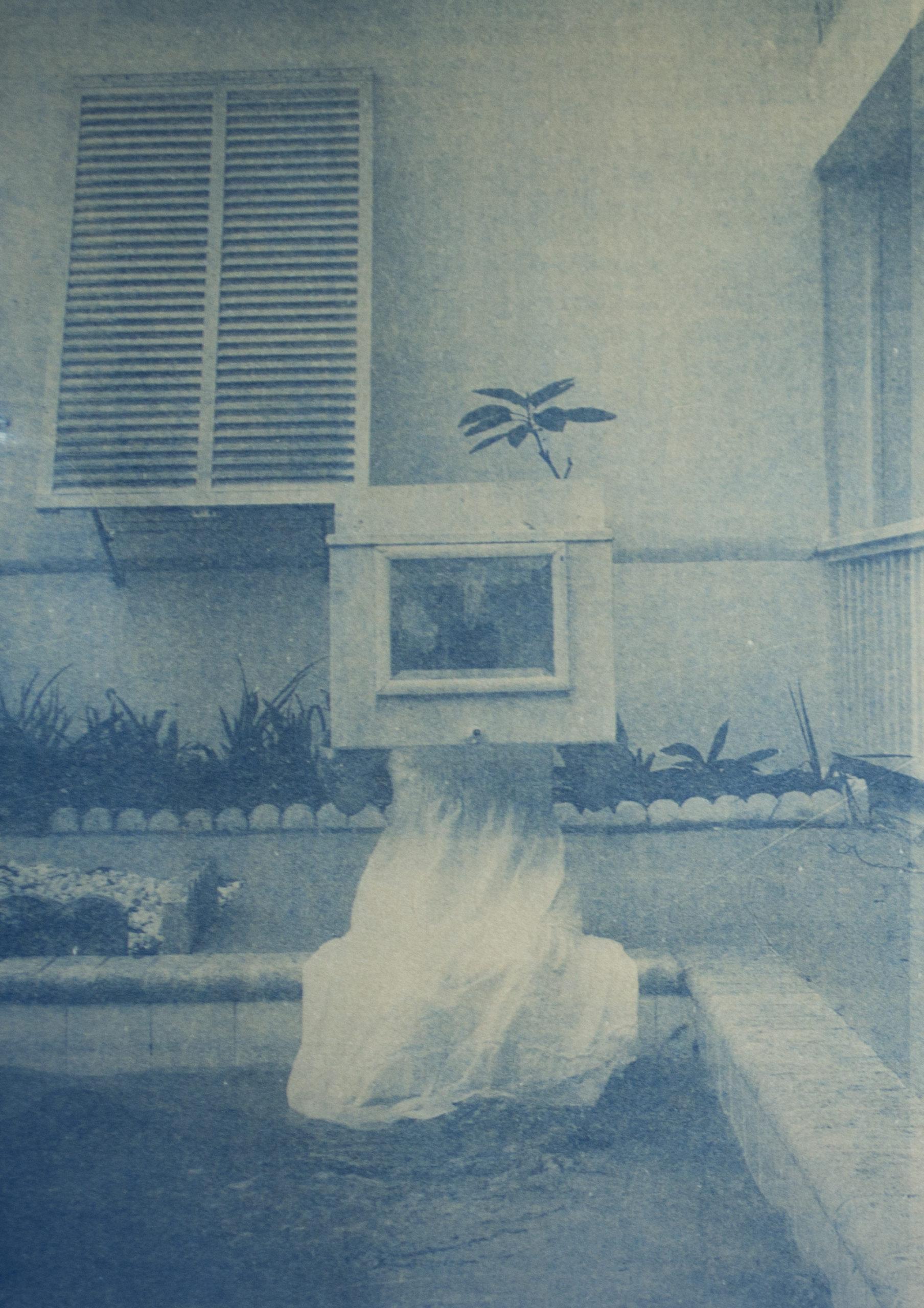 Erika Cespedes cyanotype