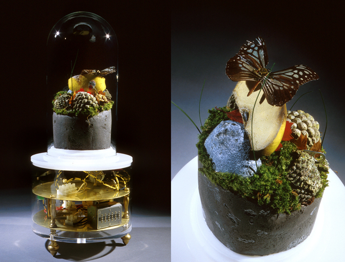 Untitled (The New American Landscape); Paul Stout, plastic casing with a glass top enclosing a Butterfly, Styrofoam soil rocks and fruit, dried grasses and leaves, and brass, steel and aluminum parts, H: 20