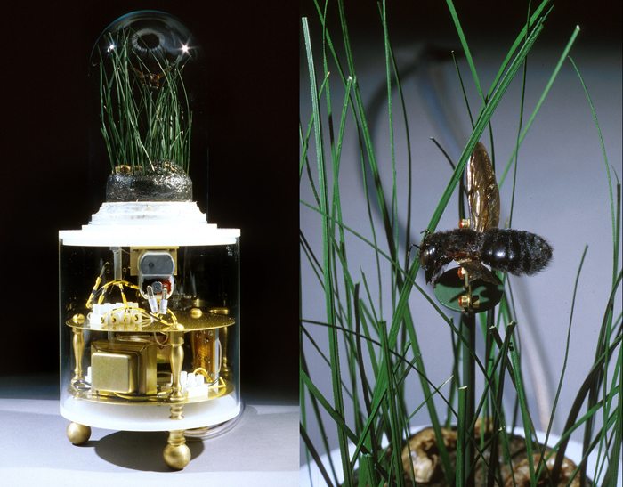 Untitled (The New American Landscape); Paul Stout, plastic, brass, glass, steel, Styrofoam, preserved plants, bumble bee, H: 14.5