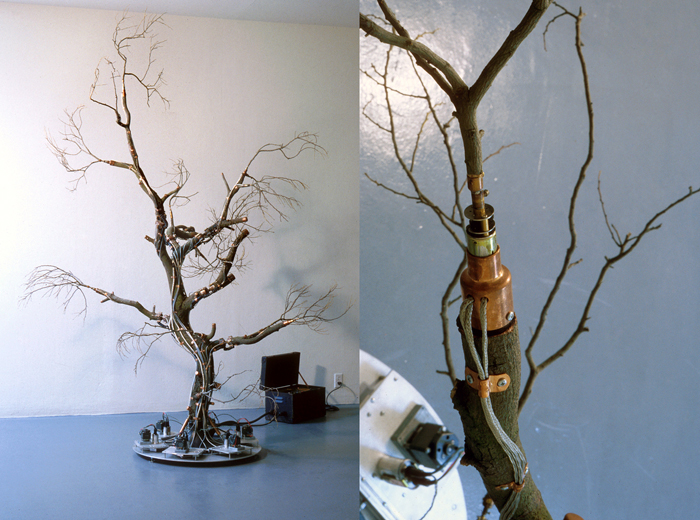 Treetime; Paul Stout and Bruce Cannon, Wood, aluminum, steel, copper, wiring, motors, electronics, 72 x 60 x 60