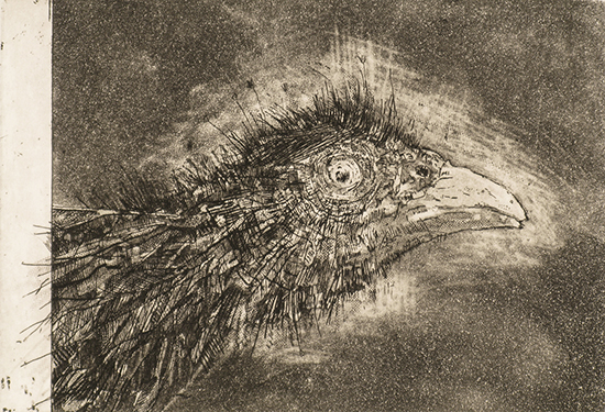 Self portrait with combover. Etching. 2007.