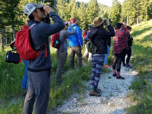 Wildlife Viewing in Centennial Valley, Montana