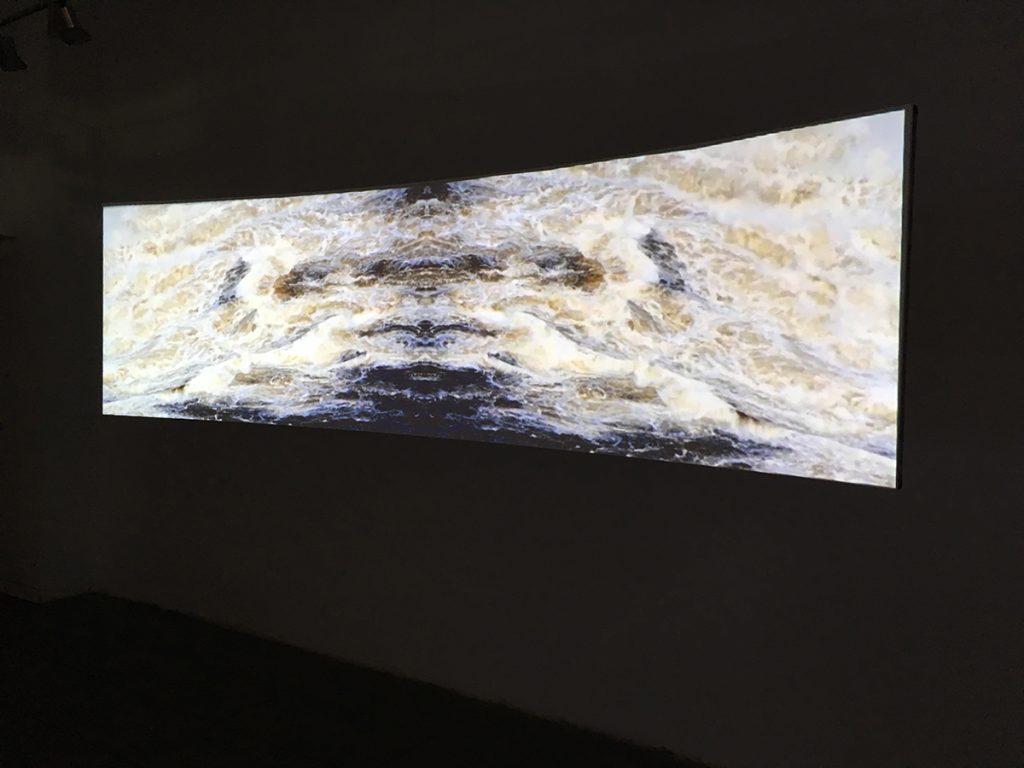 Migrating Consciousness, installation view