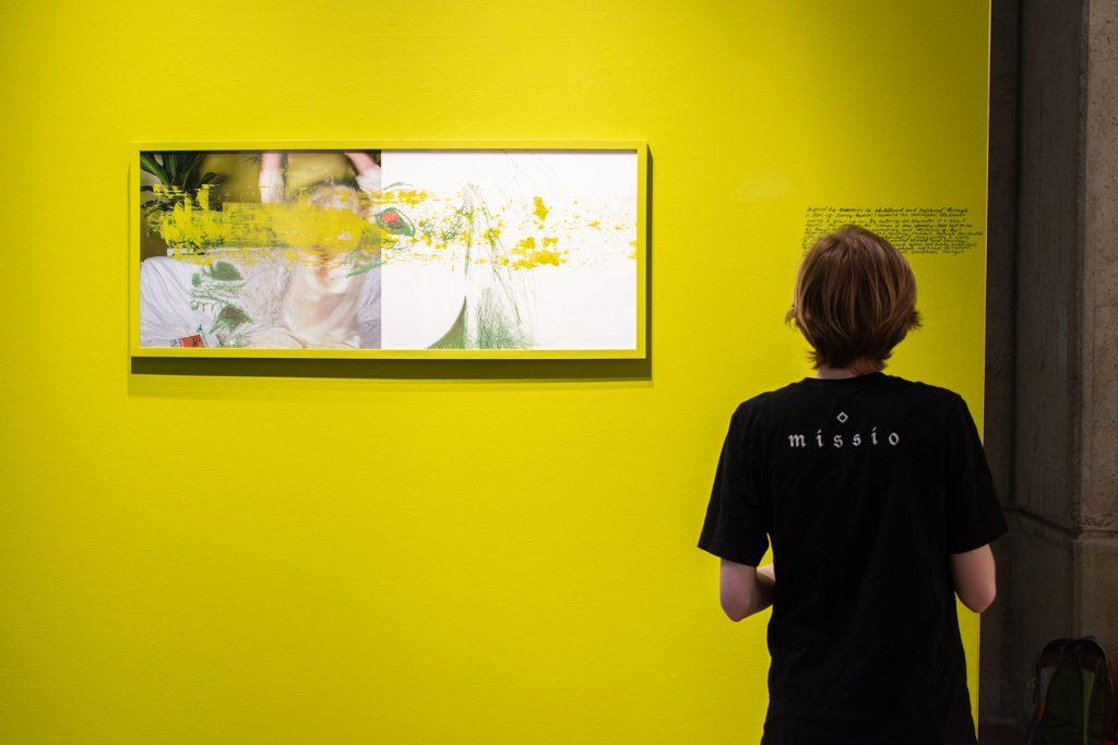 2020 MFA Interim Exhibition: Mixed Bag, artwork: Candace von Hoffman