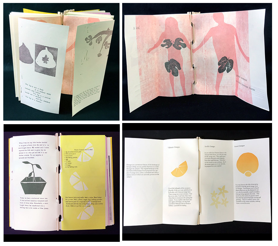 Scripps Press.Toot Toot- A Book about Fruit, 4.5 by 9.75 inches, handset letterpress, pressure printing, linocuts, cut vinyl, original writing and recipes, piano hinge binding, 2018oot