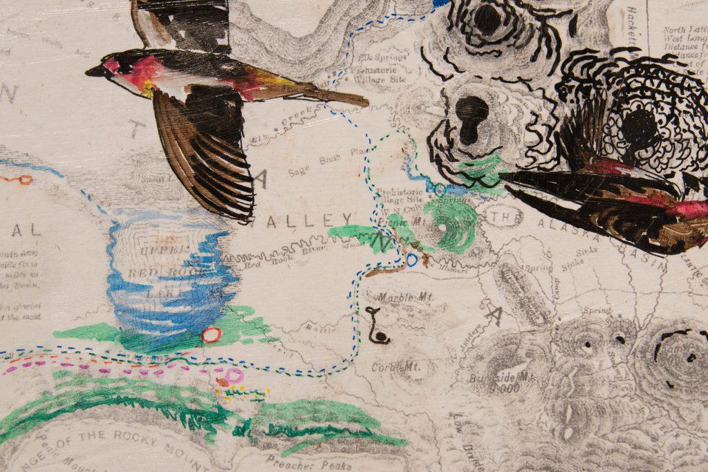Open Sky: Taft-Nicholson Residency Exhibition, Gittins Gallery, September 2017; artwork: Eva Holbrook