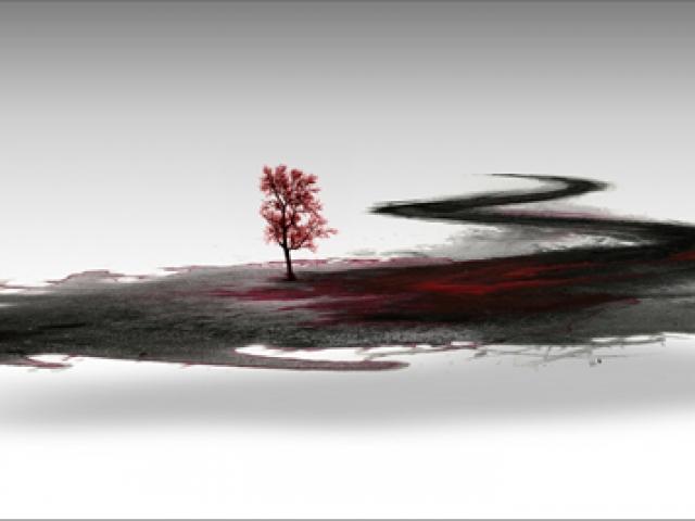 Land, Van Chu, 2009-10
