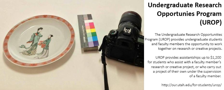 Undergraduate research opportunities program banner