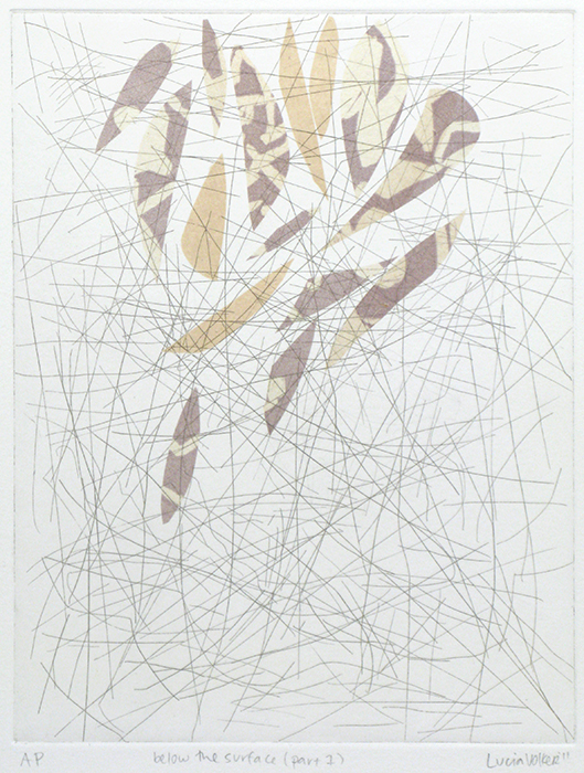 Advanced Print. Lucia Volker. Etching & Chine Colle. 2012.