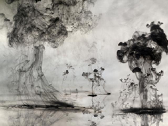 Mushrooms 'n' Trees, Van Chu, 2009-10