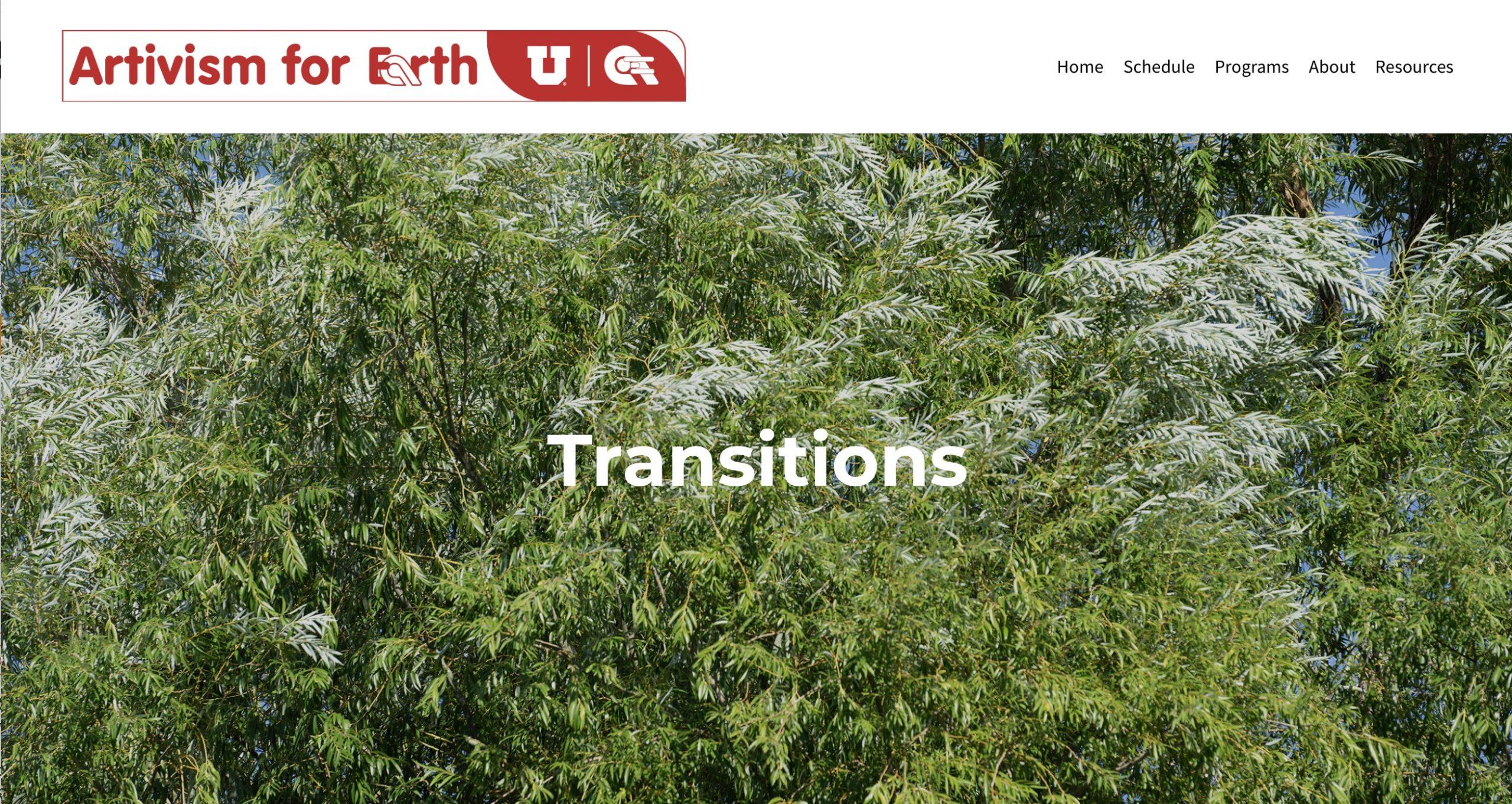 Artivism4Earth-Transitions